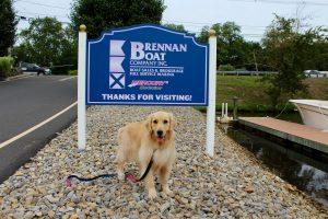 dog standing under brennan boat sign