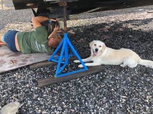 mechanic and dog